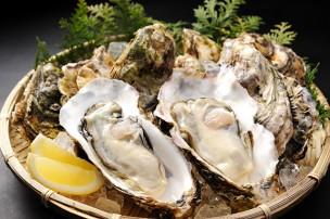 牡蠣と健康