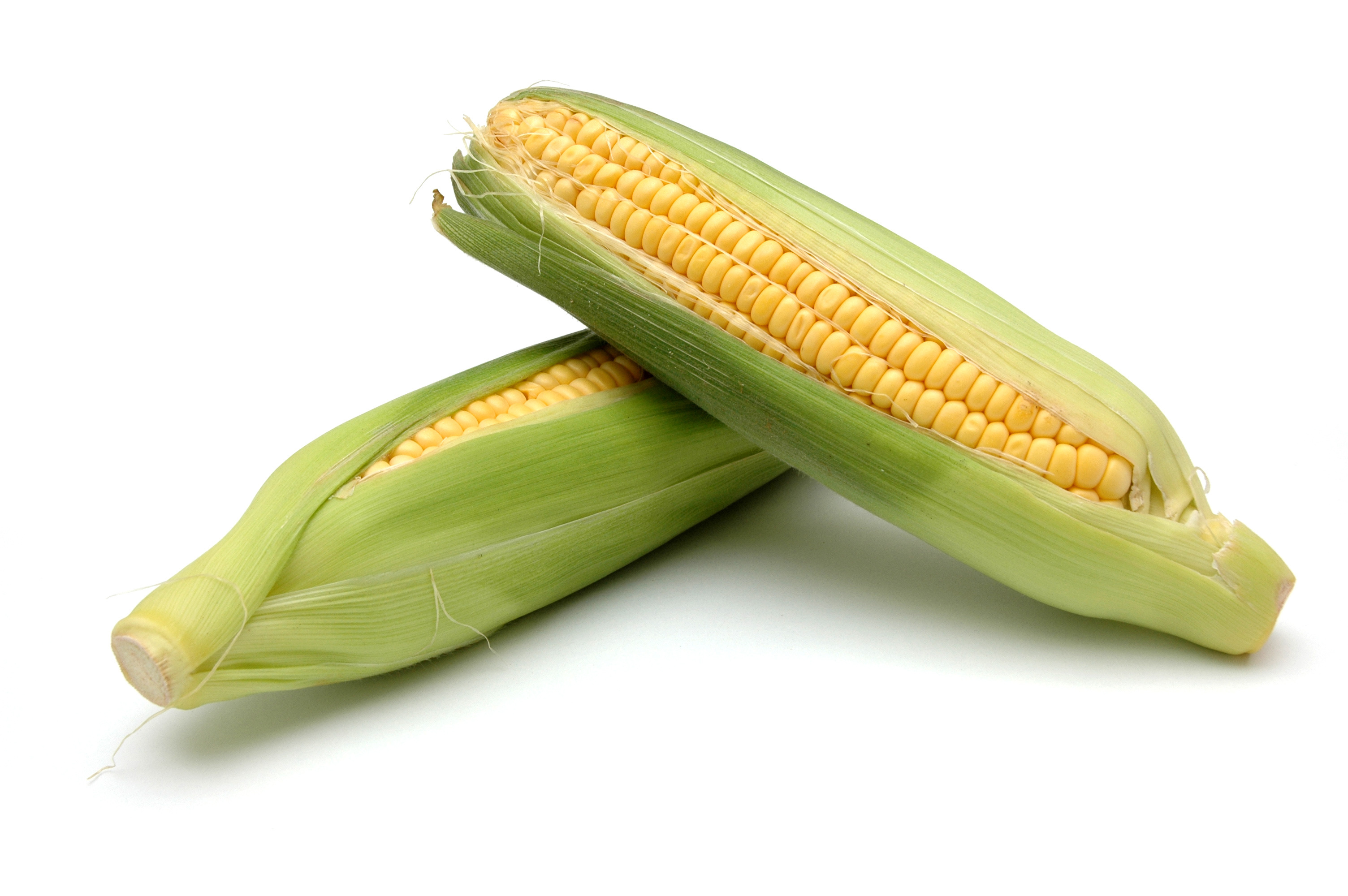 2 corn on cob